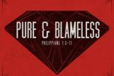 Pure & Blameless: The Foundation of True Joy